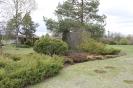 Brauciens uz Kālsnavas arboretumu_24