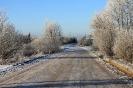 Decembra sākums Ozolaines pagastā_44