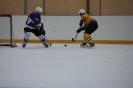 Hokeja turnīrs Ludzā 11.02.2017._33
