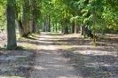 Lazānu parks_10