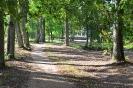 Lazānu parks_13