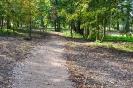 Lazānu parks