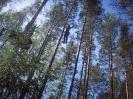 Liepu pamatskolas iespaidi par ekskursijām uz Daugavpili_4
