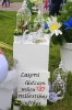 Ozolaines pagasta dižošana Rēzeknes novada svētkos_101