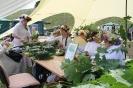 Rēzeknes novada diena 15.07.2017._99