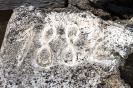 Sakopta Runču kapliča