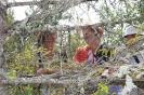 Sieviešu klubiņš apguva zināšanas dārzkopībā