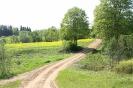 Zied rapšu lauki Ozolaines pagastā_4