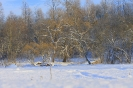 Hokeja spēle Ritiņos 17.01.2016_62
