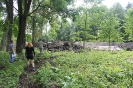 Turpinās Laizānu parka labiekārtošanas darbi_2